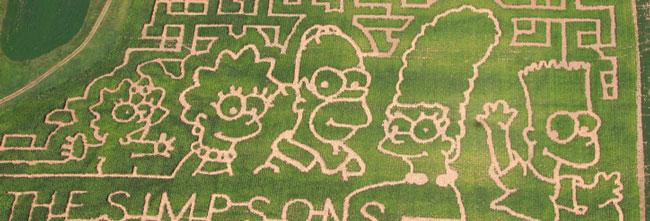 Симпсоны на кукурузном поле