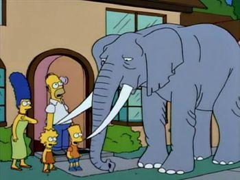 Слон Стампи